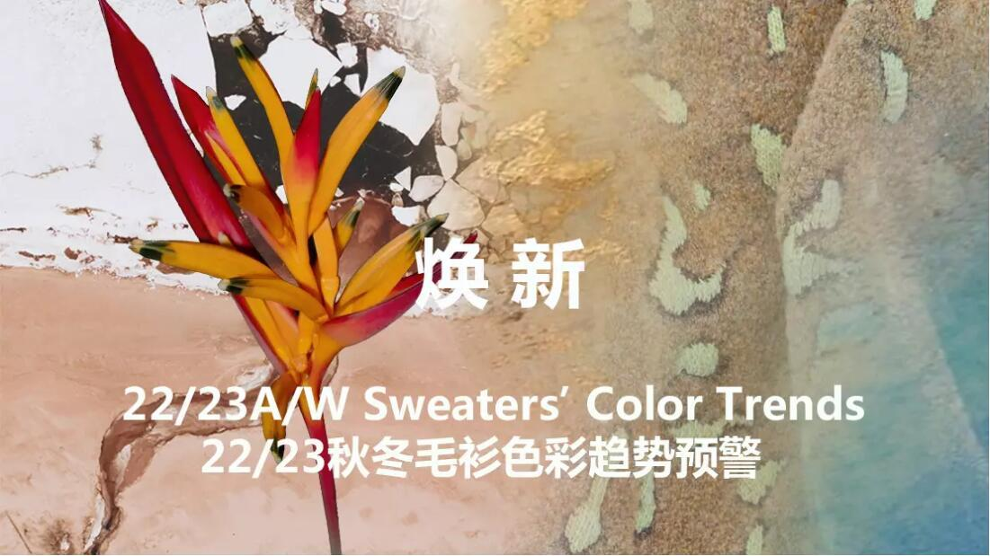 22/23 Sweater