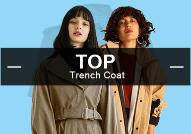 Trench Coats -- The Analysis of Popular Items in Womenswear Markets