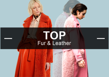 Fur -- Analysis of Hot Items in Womenswear Markets