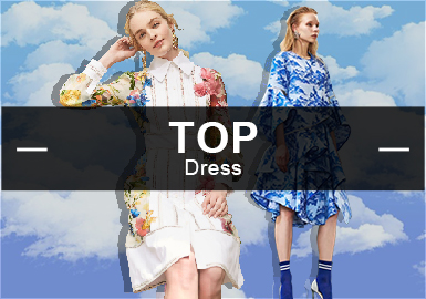 The Dress-- The Analysis of The Hot Item in Womenswear