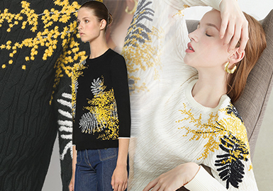 Big Brand Effect -- The Comprehensive Analysis of Women's Knitwear in Domestic Market