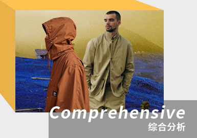 Functionality and Diversification -- The Comprehensive Analysis of Japanese Designer Brands