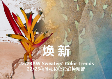 Renew -- Color Trend for A/W 22/23 Sweater