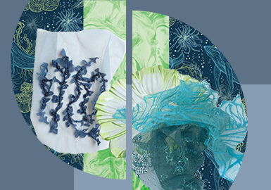Charming Ocean -- The Pattern Craft Trend for Women's Lace Underwear